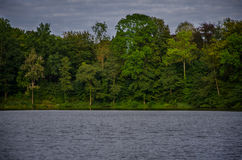 Fische bemannen durch den See Stockbild