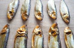 Fische der geräucherten Heringe Köstliche geräucherte Fische auf der Leinwand Lizenzfreie Stockfotos