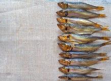 Fische der geräucherten Heringe Köstliche geräucherte Fische auf der Leinwand Lizenzfreie Stockfotografie