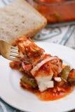 Fische in der Tomatensauce Lizenzfreie Stockbilder