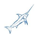 Fische des blauen Speerfisches Stockfotografie