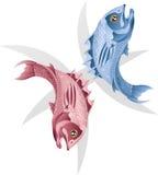 Fische die Fische star Zeichen Stockfoto