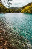 Fische, die im See mit Türkiswasser, unter Kaskaden von Wasserfällen schwimmen Plitvice, Nationalpark, Kroatien stockbild