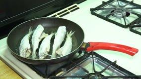 Fische durch Öl in der Wanne braten, gebraten in der Bratpfanne mit Heißöl, stock video footage