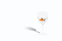Fische in einem Weinglas Stockbild
