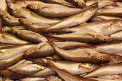 Fische für Verkauf in Hong Kong Stockbild
