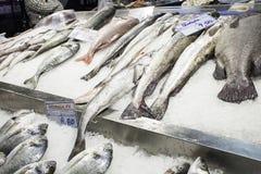 Fische für Verkaufshandel Stockfotos