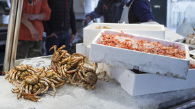 Fische am Fischmarkt Stockfoto