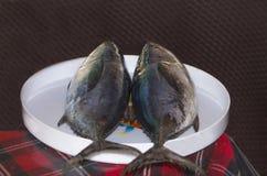 Fische frisch ein Thunfisch Stockfotos