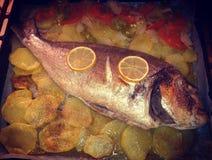 Fische gebacken mit Kartoffeln lizenzfreie stockfotografie