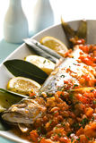 Fische gebacken mit Tomatensauce Lizenzfreies Stockbild