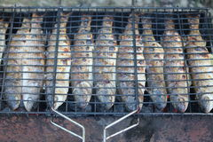 Fische gebraten Stockbilder