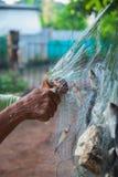 Fische gefangen in den Netzen Lizenzfreies Stockbild