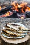 Fische gekocht auf Feuer Stockfotografie
