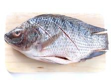 Fische, hölzerne Schneidebretter Lizenzfreie Stockfotografie