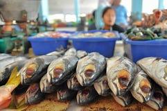Fische im traditionellen Fischmarkt Stockbilder