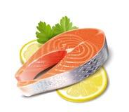 Fische Lachse lizenzfreie abbildung