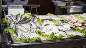 Fische am Markt Lizenzfreie Stockbilder