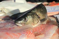 Fische am Marktkonzept Stockfotos