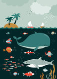 Fische, Meerespflanzen, Luftblasen Seeschildkröte nahe Gili Meno Lizenzfreies Stockbild