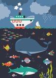 Fische, Meerespflanzen, Luftblasen Seeschildkröte nahe Gili Meno vektor abbildung