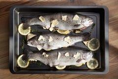 Fische mit Zitrone in der Wanne Lizenzfreie Stockbilder