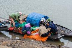 Fische sortieren und verkaufend Lizenzfreie Stockfotos