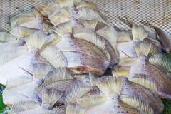 Fische trocknen für Hintergrund- oder Lebensmittelkonservierung stockfoto