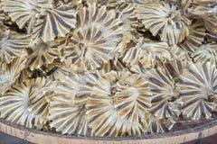 Fische trocknen für Hintergrund- oder Lebensmittelkonservierung lizenzfreies stockbild
