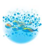 Fische u. blaue Luftblasen stock abbildung