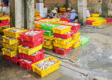 Fische und Eis in der Kunststoffschale Lizenzfreies Stockfoto