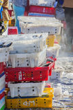 Fische und Eis in der Kunststoffschale Stockfoto