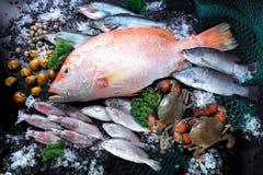 Fische und essbare Meerestiere lizenzfreies stockbild