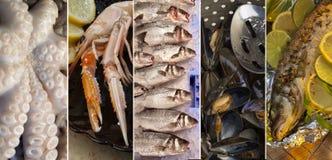 Fische und essbare Meerestiere lizenzfreie stockfotos