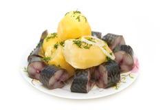 Fische und gekochte Kartoffeln auf weißem Hintergrund Stockfotografie