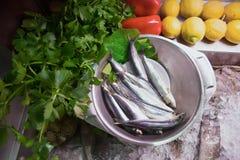Fische und vegs Stockbild