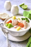 Fischeintopf mit Gemüse lizenzfreies stockbild