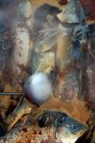 Fischeintopfgericht Stockfoto