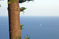 Fischen, Meer und das Boot Lizenzfreie Stockfotografie