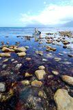 Fischen-Meerblick Stockfoto