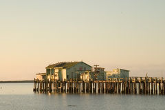 Fischen-Pier an der Dämmerung Stockfotografie
