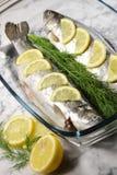 Fischen Sie auf einer weißen Platte mit Zitronen und Dill Lizenzfreies Stockfoto