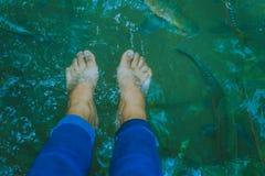 Fischen Sie Badekurort, sauberen Fuß, Gesundheitswesenkonzept mit Kind an Arawan-wa stockfotografie