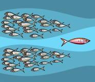 Fischen Sie das Gehen gegen die Gezeiten Stockbild
