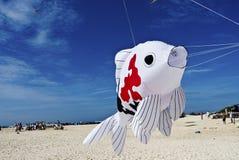 Fischen Sie den Drachen, der für blaue Himmel am Strand sich entfernt Stockbilder