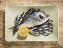 Fischen Sie in der grünen Platte Stockbild