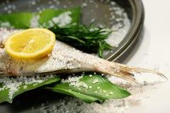 Fischen Sie Geschichte mit Zitrone, Salz und Kräutern Stockbilder