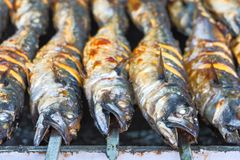 Fischen Sie Makrele auf dem Grill auf Aufsteckspindeln mit Zitrone lizenzfreies stockfoto