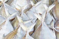 Fischen Sie trockene Lebensmittelkonservierung oder für Tapete, Hintergrund stockfoto