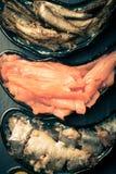 Fischen Sie Zusammenstellung und Oliven auf magischen Platten auf einem dunklen Hintergrund Lizenzfreie Stockfotos